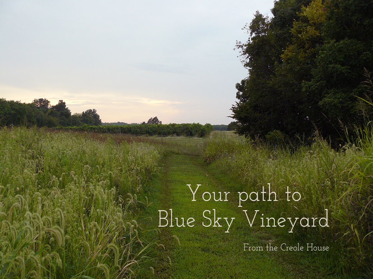 Path from Creole House to Blue Sky Vineyard